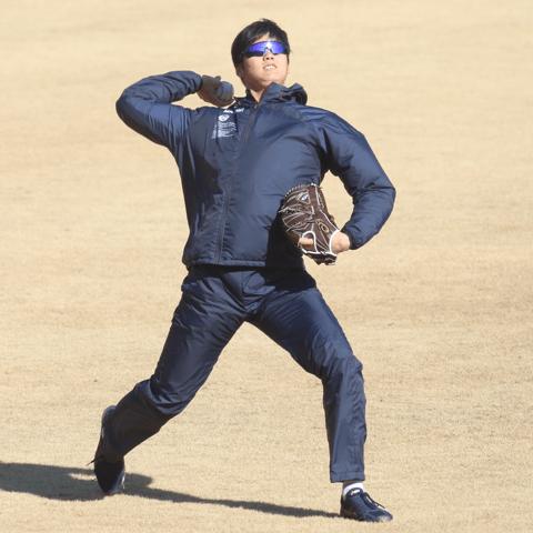 過去5年、大谷翔平のオープン戦とレギュラーシーズンの関係は? メジャーで活躍できるか検証!